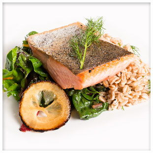 Gourmet Fish Dish - Food Service Management